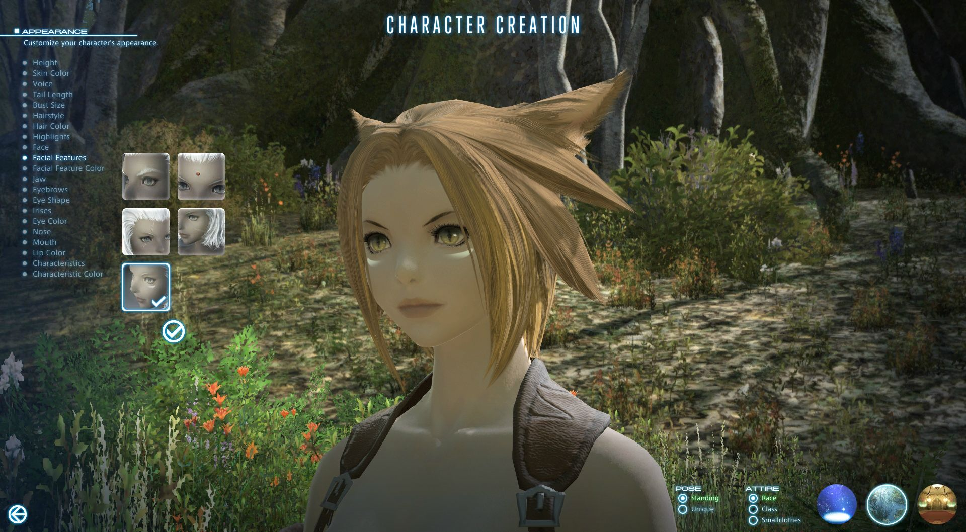 Get Ready For FFXIV A Realm Reborn With The Character Creator and